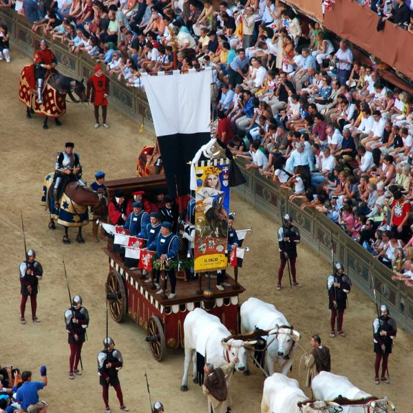 "The ""Carroccio"" at the Palio di Siena, Tuscany, Italy"
